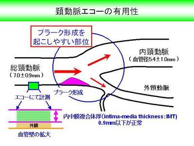 image25[1].jpg
